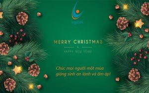 Chúc mừng giáng sinh và năm mới 2021